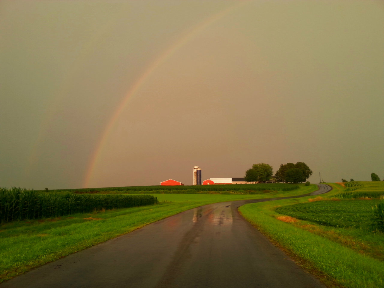 Rainbow after the storm (photo)